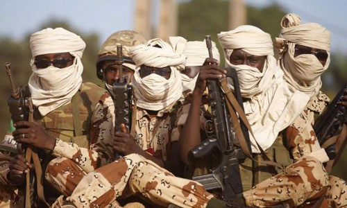 Chadian soldiers kill 207 Boko Haram fighters in Nigeria - army
