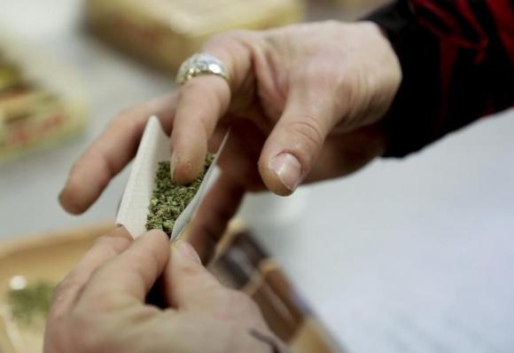 Three types of marijuana to hit Uruguayan pharmacies in 2016