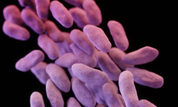 Health officials push for stricter 'superbug' defense