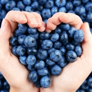 Blueberries may help to control blood pressure