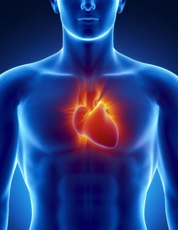 Risk factors for heartburn: excess weight, smoking