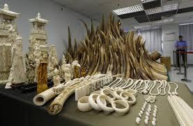 China bans ivory imports ahead of royal visit