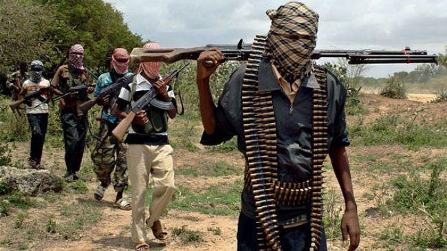 Boko Haram raid town in Nigeria's Borno state, at least 12 dead