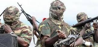 Boko Haram insurgents kill 10 in Nigerian border town