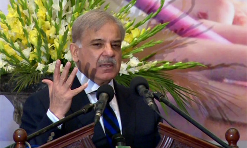 Critics of Danish schools not sincere with nation, says Shahbaz Sharif