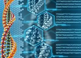 Online platform 'Open Humans' launches to share DNA, other data