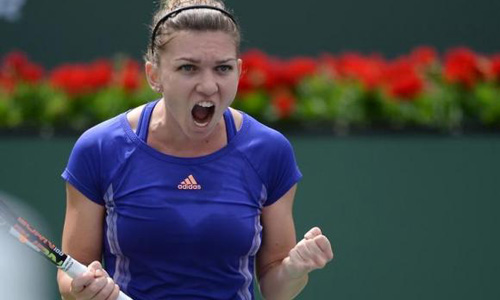 Hard for Halep to think of top spot while Serena rules