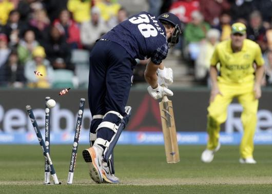 Starc takes 4-14 as Australia rout Scotland in World Cup tie