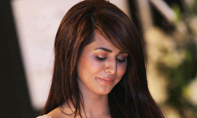 Ayyan Ali not presented in court due to lawyers' strike