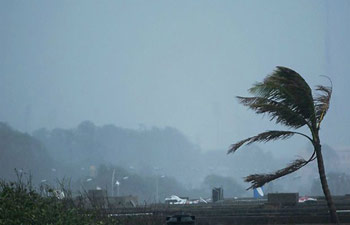 Severe storm kills 24, injures more than 50 in Bangladesh