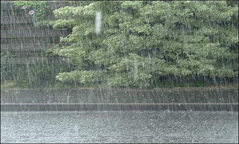 Nine injured in countrywide rain, snowfall