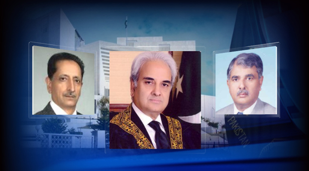 PPP, JI submit evidence of polls-rigging before judicial commission