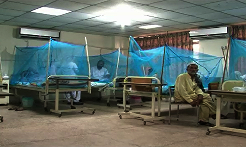 Six students contract dengue despite spray in Attock school