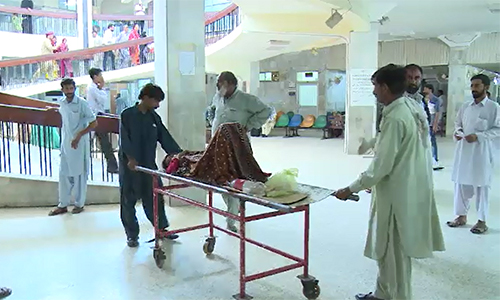 80 more patients test positive for dengue in Rawalpindi