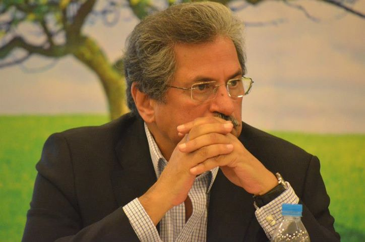 PTI leader Shafqat Mehmood resigns from post following PTI's worst performance