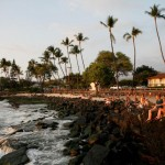 Hawaii's Big Island declares emergency over dengue fever infections