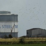 Greybull Capital mulls bid for Tata Steel's speciality arm