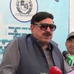 Rulers must form commission or they'll have to go, says Sheikh Rashid