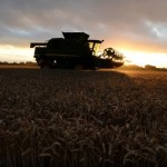 UK farmland demand falls sharply as Brexit adds to price woes