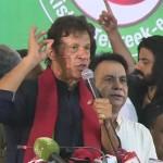 Nov 2 will decide Pakistan's fate: Imran Khan