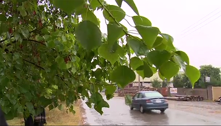 New rain system enters country, snowfall continues in northern areas