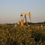 Oil prices drop on rise in US drilling