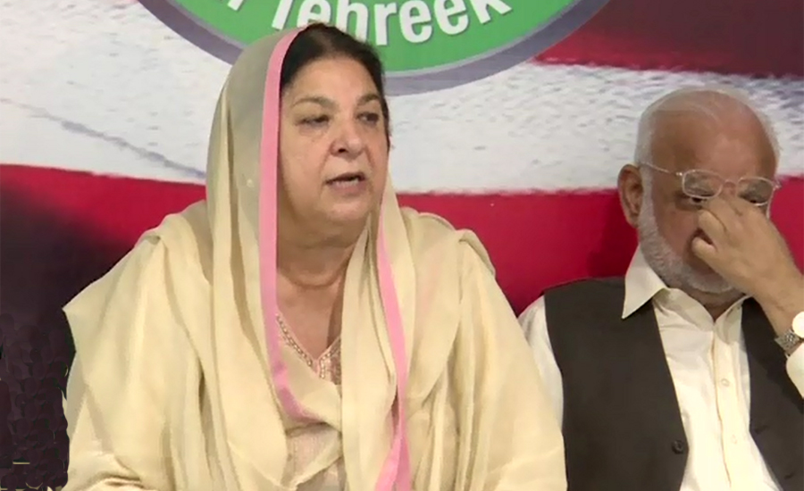 Yasmin Rashid submits petition to ECP over unverified votes