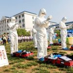 China confirms bird flu outbreak at poultry farms in central province