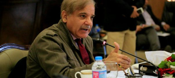 Nation, thwart, Indian aggression, Shehbaz Sharif