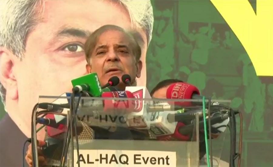 Political goons put on display a big mockery on Jan 17 on Mall Road: Shehbaz
