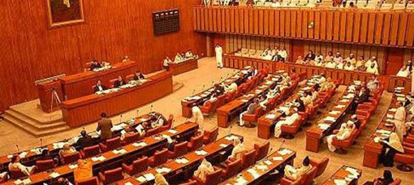 Senate Pulwama Attack condemns resolution Indian blames Pakistan Raja Zafarul Haq