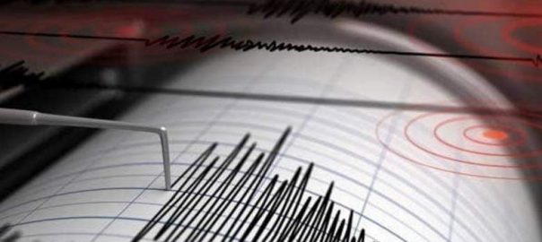 earthquake 2.9 magnitude richer scale