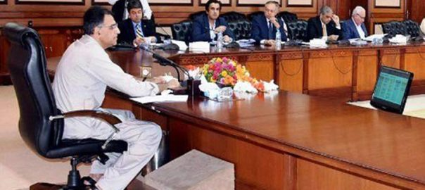 ECC Asad Umar Finance Minister Petroleum late employees supplementry grants