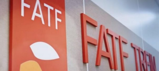 FATF Pakistan dialogue China US finance secretary