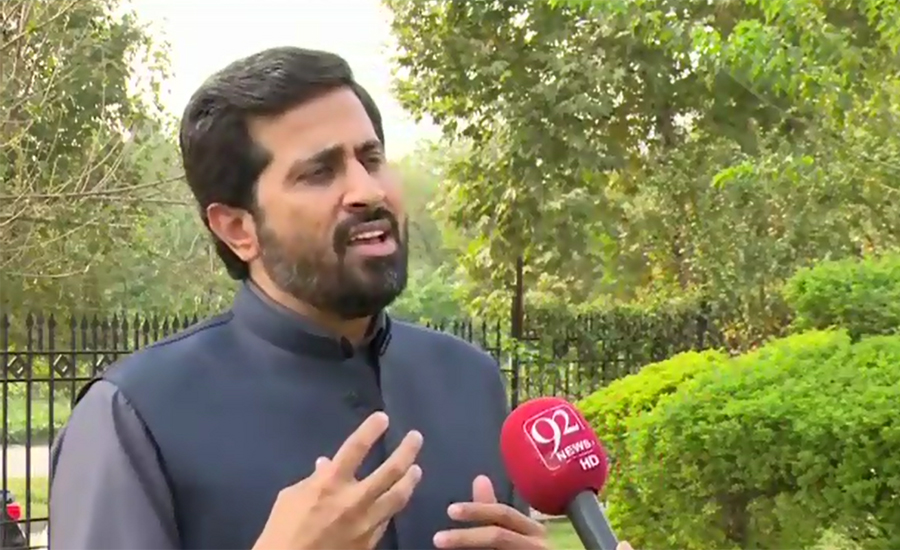 Rana Mashood trying to defame establishment: Fayyazul Hassan