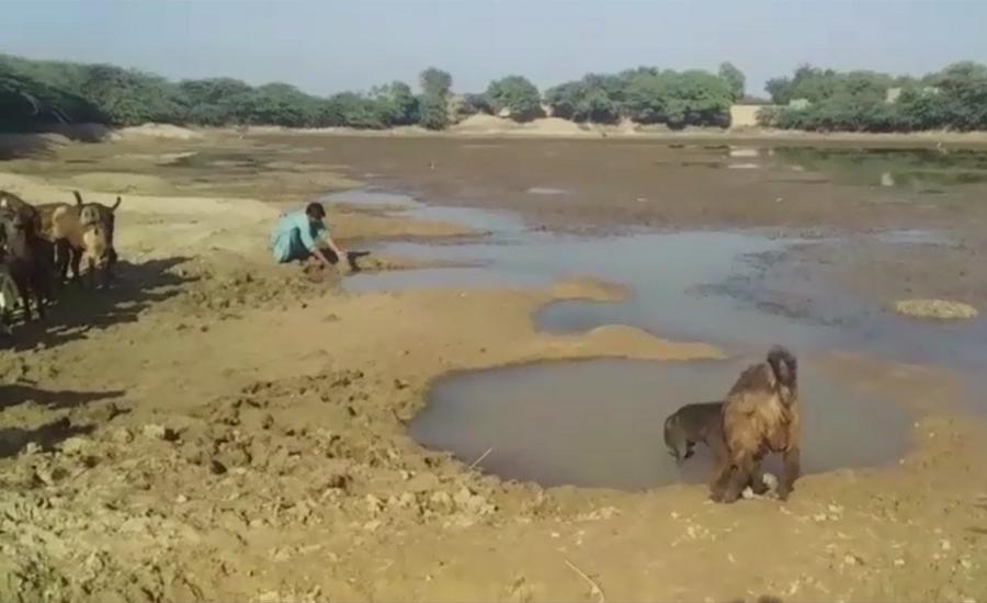 cjp saqib nisar takes notice of water crisis in balochistan s bhag