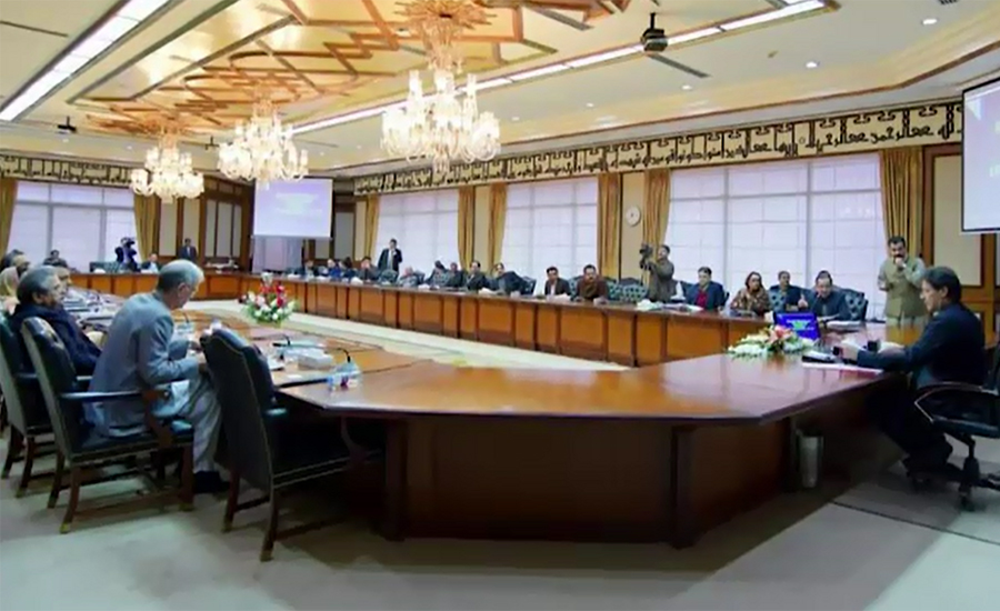 Cabinet links removal of Bilawal, Murad Shah from ECL to SC written verdict