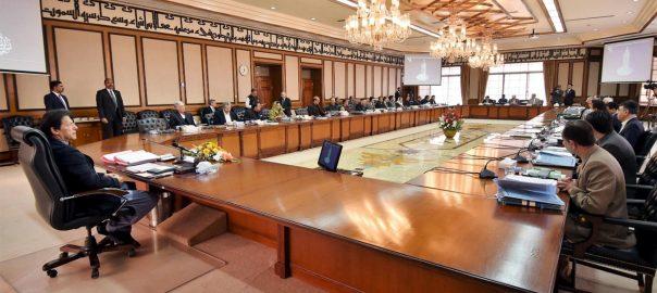 federal cabinet PM Imran Khan fawad information minitser Raza Rabbani