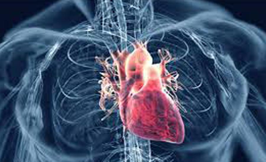Too little sleep tied to increased heart disease risk