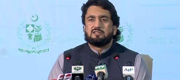 Shehryar Shehryar Afridi Hamad Azhar Masood Azhar interior minister banned outfits banned organization