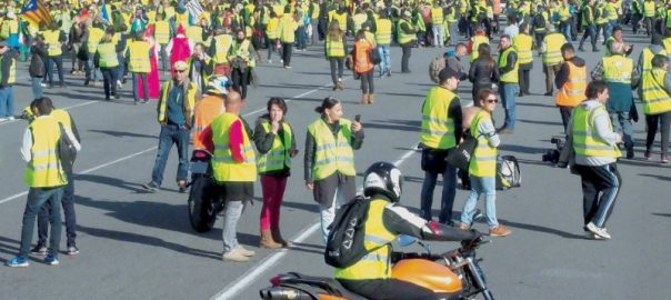 yellow vest protest tax macron demonstrator