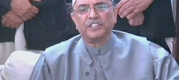 SC fake accounts case fake accounts Asif Ali Zardri faryal talpur apex court IPP excessive payments