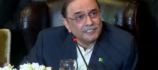 Usman Dar, SC, Asif Zardari, disqualification, 62(1)(f)