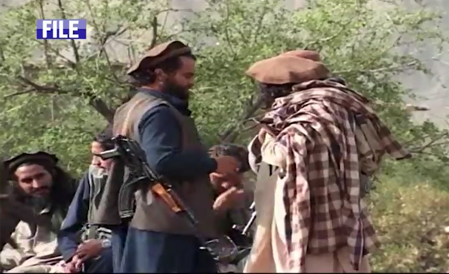 Afghan Taliban conditionally agree to dialogues in Islamabad