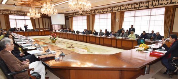 Federal cabinet, today, 20-point agenda