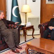 FM FM Qureshi Shah Mehmood Qureshi Pakistan India Pulwama Pakistan High commissioner to India Sohail Mehmood