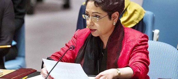 Maleeha, UN Commission for Social Development, living standard