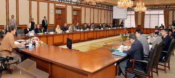 Federal cabinet, 13-point agenda, Indian propaganda