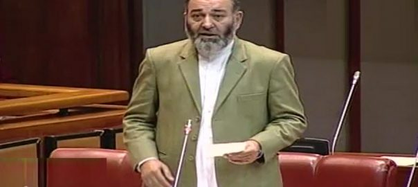 Opposition, Senate, rejects, Hajj, expenditures