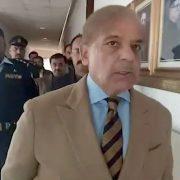 Shehbaz Shari, ECL, cabinet, NAB